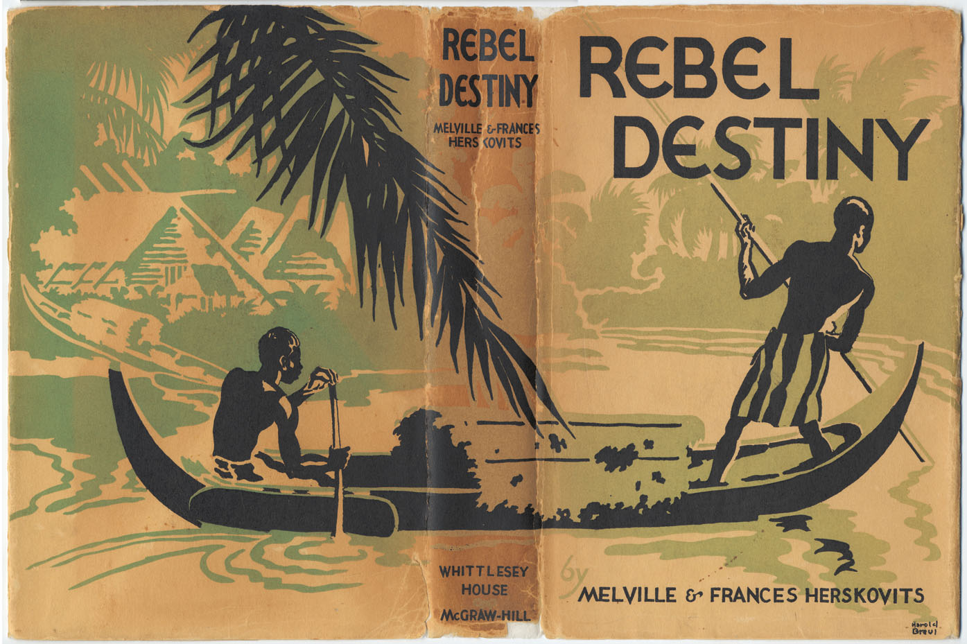 Couverture Rebel Destiny