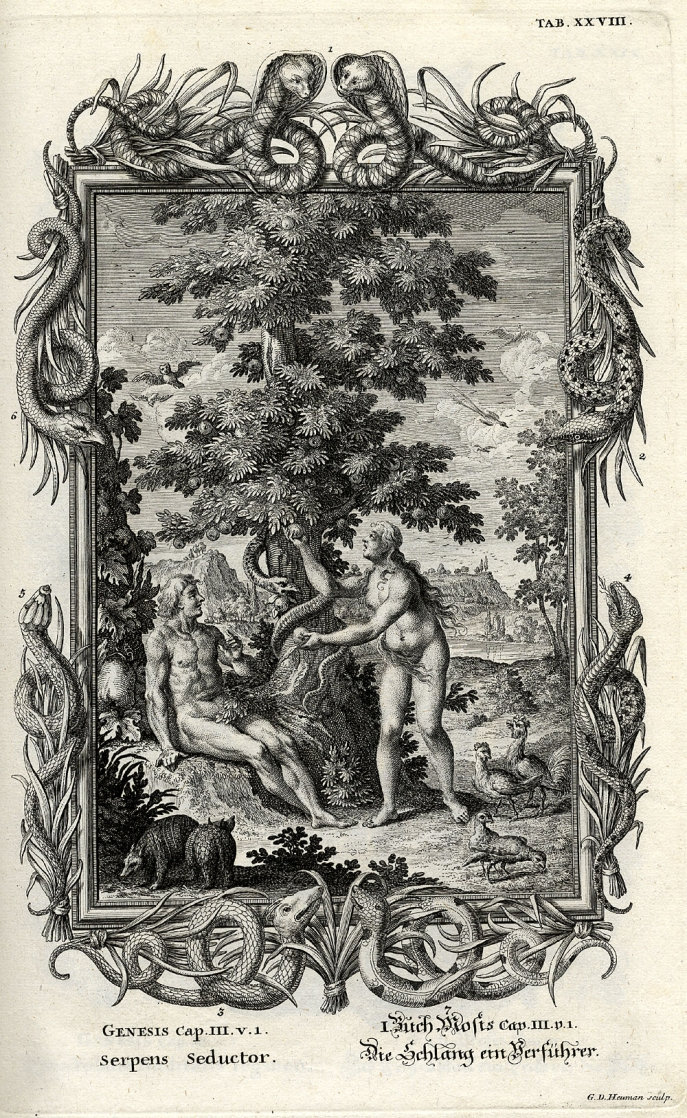 Scheuchzer, Chapter III, Serpens seductor:  Sitting Adam, with Eve offering the forbidden fruit